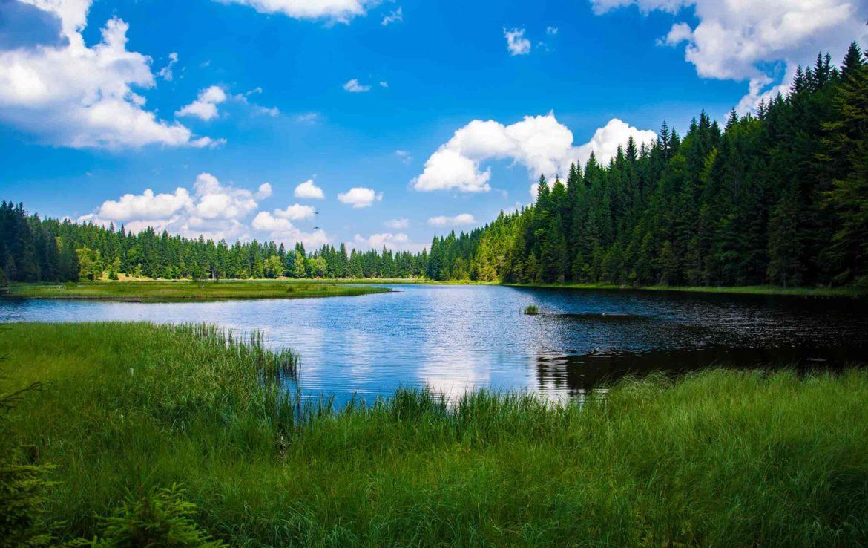 expertise fonciere compensation ecologique